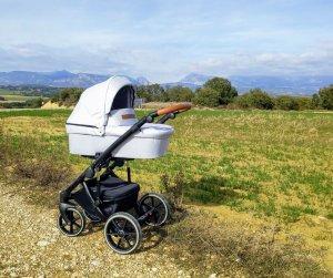 Características de carrito de bebé todoterreno