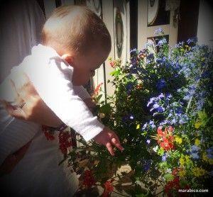 bebé_y_flores.jpg
