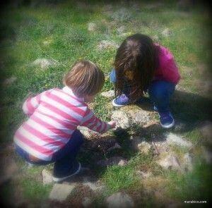 niños_naturaleza.jpg
