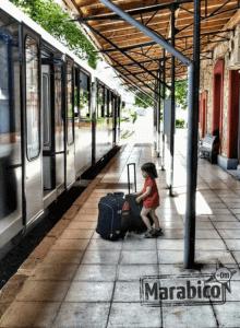 Mara tren viaje (1)