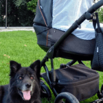 Carrito de ecopiel en verano – la opinión de nuestra embajadora después de 5 meses con su carrito Bexa